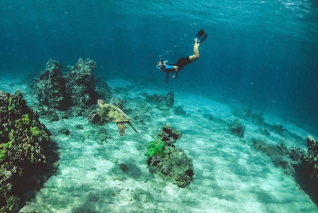 Snorkeling in Costa Rica - Best Spots