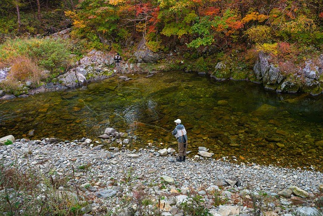 North America Trout and Salmon Fishing