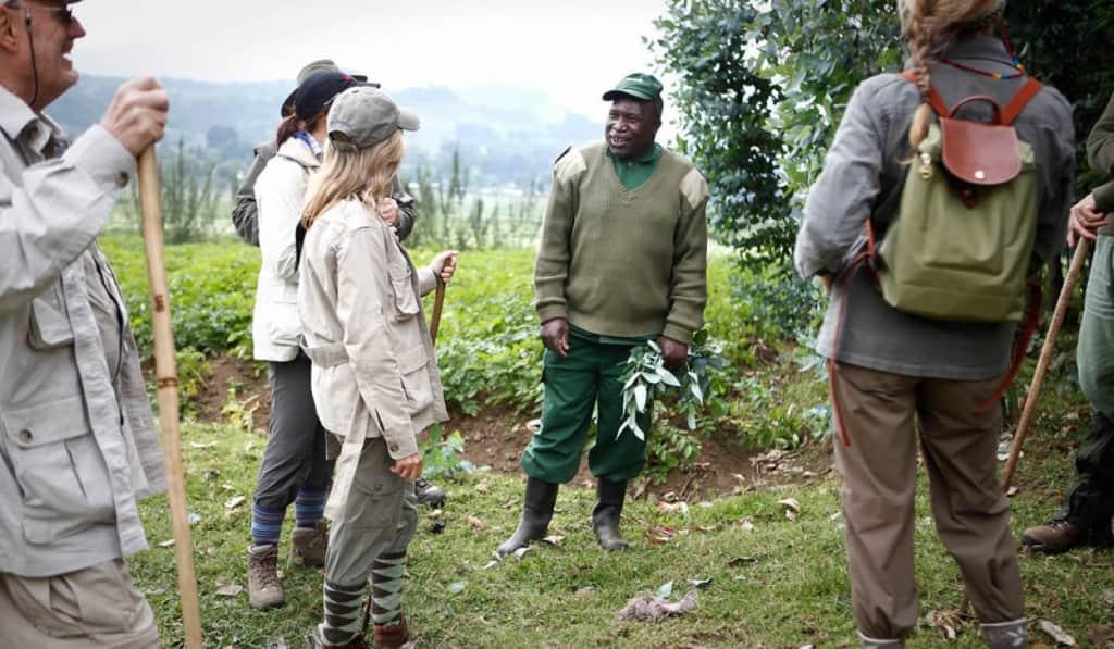 Gorilla Habituation project at Bwindi Impenetrable National Park