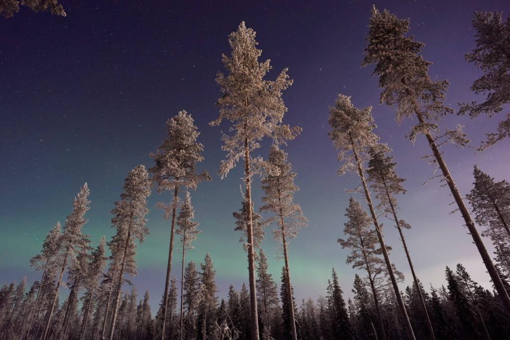 Where to see the Northern Lights in Finland