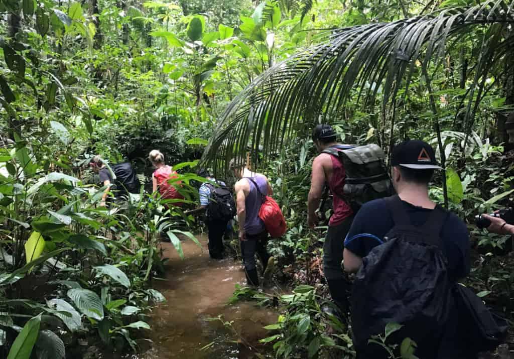 Trekking Through the Amazon with Large Minority