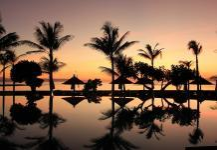 Honeymoon in Bali, Indonesia
