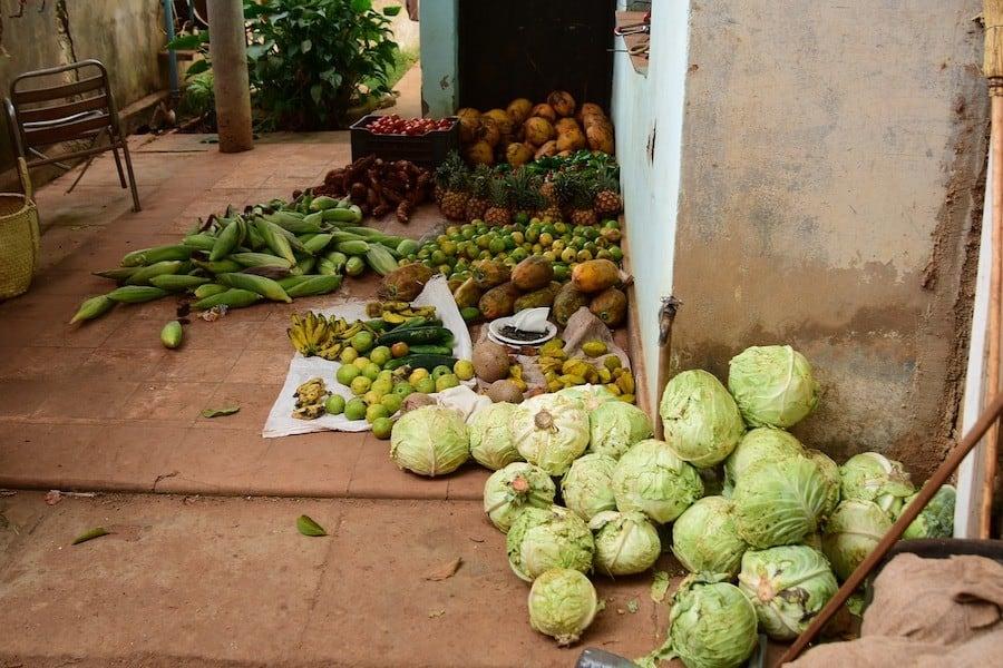 Cuban Food - Produce Staples