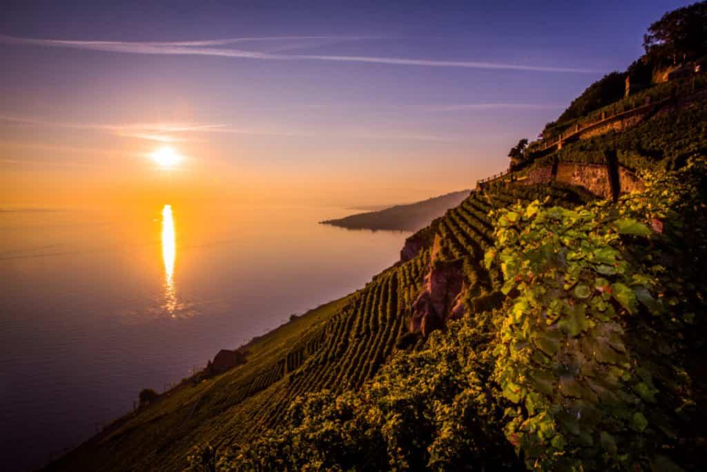 Lavaux vineyards, Lausanne, Switzerland