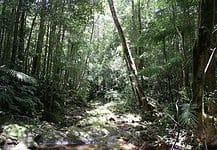Camping in Queensland, Australia