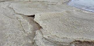 Swimming in the Dead Sea