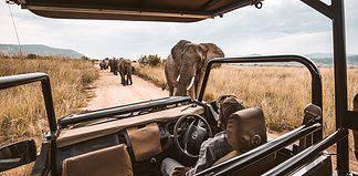 first time safari tips