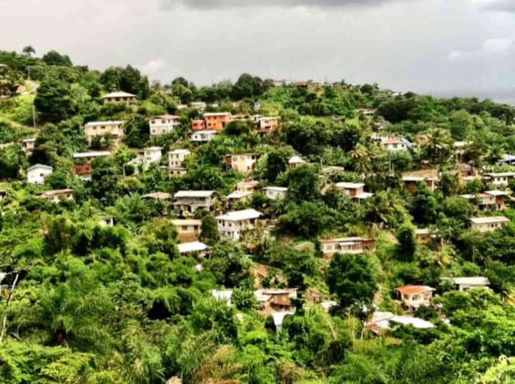 Green Trinidad and Tobago