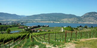 Naramata Bench Wine Country in Canada