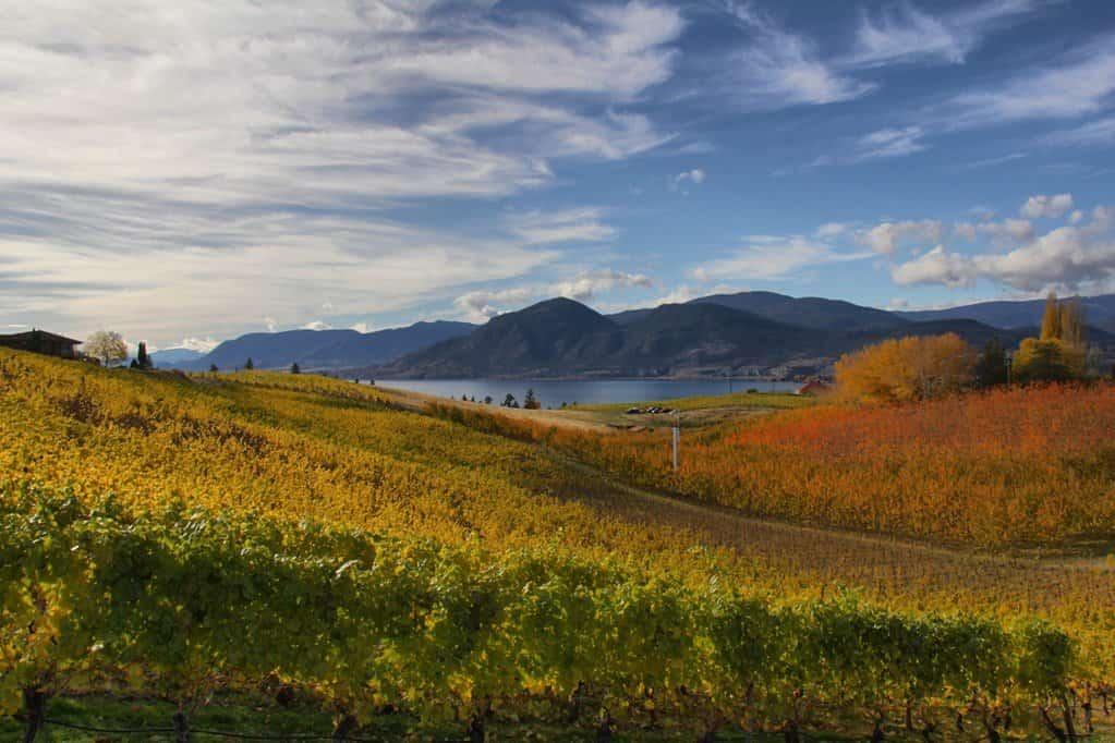 Naramata Bench Wine Country in Canada