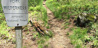 Appalachian Trail in Virginia