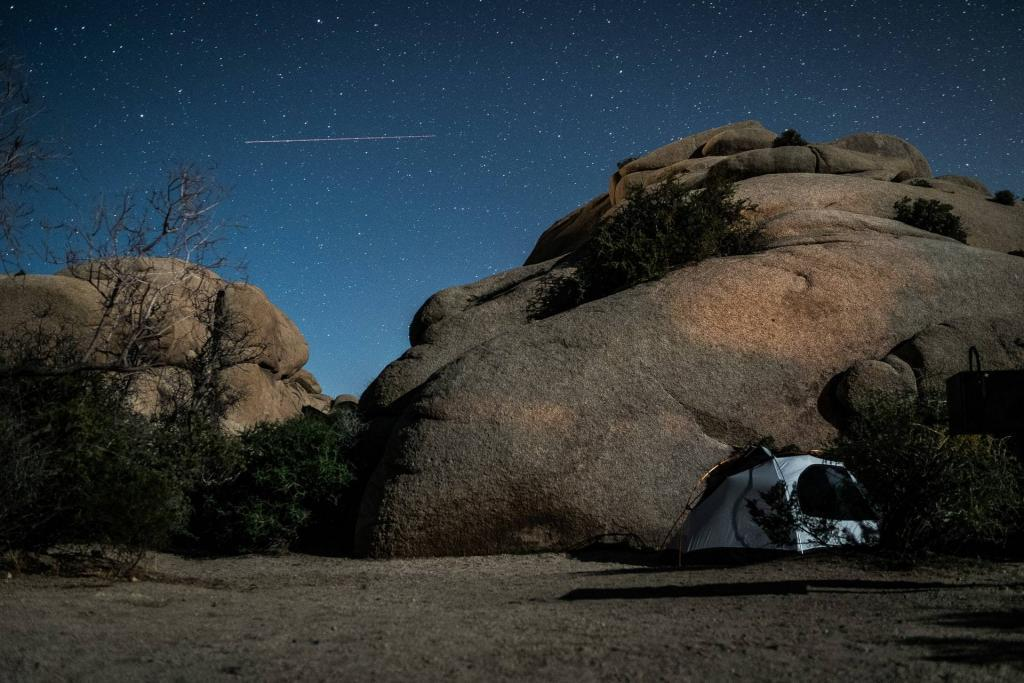 Things to do in Joshua Tree National Park