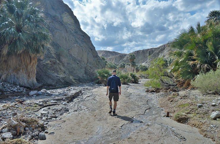Stream in the Pushawalla Canyon, San Andreas Fault Hike, Southern California.