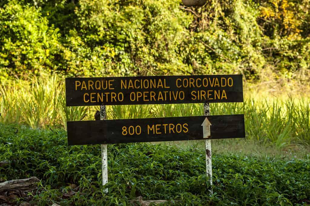 Corcovado National Park hike, Costa Rica